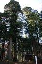 十二山の神神社 【小国町】:画像