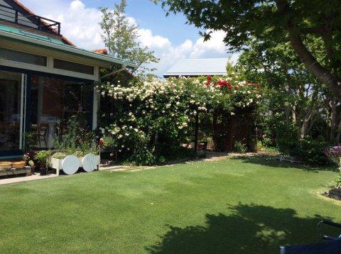 我が家の庭:画像