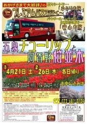 プレミアムバスで行く!五泉チューリップと阿賀野桜並木★:画像
