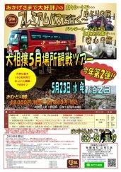 プレミアムバスで行く!大相撲5月場所観戦★:画像