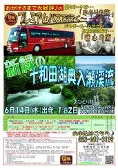 プレミアムバスで行く!新緑の十和田湖奥入瀬渓流★:画像