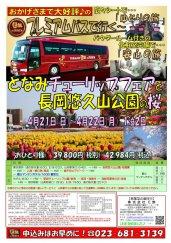 プレミアムバスで行く!となみチューリップフェアと長岡悠久山公園の桜★:画像