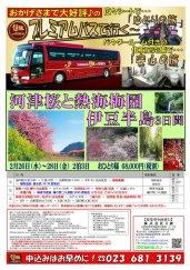 プレミアムバスで行く!河津桜と熱海梅園・伊豆半島3日間★:画像