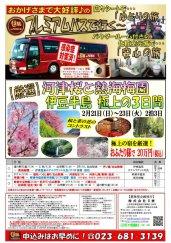 プレミアムバスで行く!【厳選】河津桜と熱海梅園伊豆半島 極上の3日間★:画像