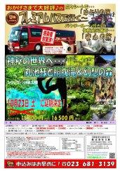 延期決定!プレミアムバスで行く!神秘の世界へ…丸池様と胴腹滝&幻想の森:画像