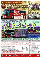 プレミアムバスで行く!あしかがフラワーパークイルミネーションツアー:画像