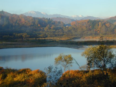 最高の紅葉景観:画像