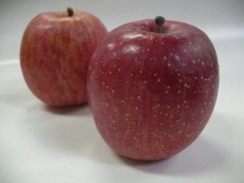山形のりんごの生産量は全国第4位:画像