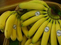 エクアドル産《オリートバナナ》原生林の中のちっちゃな農園:画像
