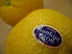 アメリカ産《バレンシアオレンジ》サンキスト:画像