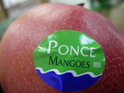 まるでリンゴのようなマンゴー:画像