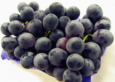 濃厚な大粒葡萄:画像