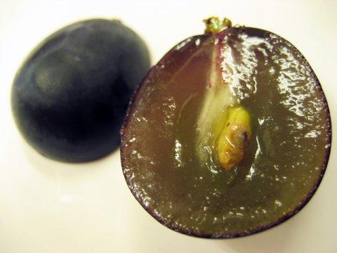 コクのある強い甘味と果汁が持ち味:画像