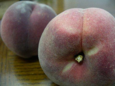 """""""幻の桃""""いけだはフルーツ王国山形県は東根市から育ちました。:画像"""