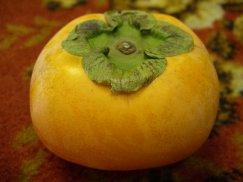 奈良県産《刀根柿》種なし柿:画像