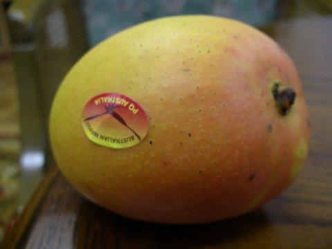 オレンジ色をした可愛いらしいマンゴー:画像