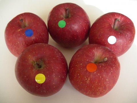 ふじりんご食べ比べbox/上位4産地5種類の味くらべ:画像