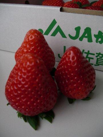 すっきりした甘さで食べやすい苺:画像