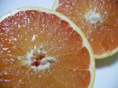 米国フロリダ産《完熟グレープフルーツ》ルビー&ホワイト:画像