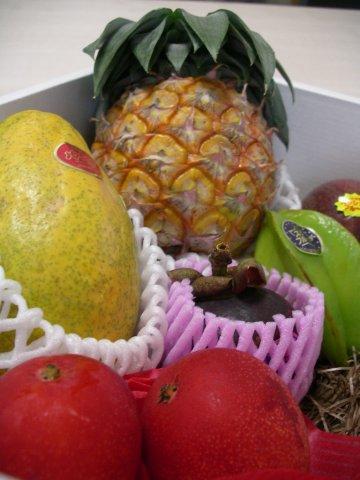 フルッティア厳選《トロピカル》南国フルーツ6種類の夢の競演です!:画像