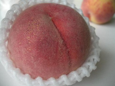 桃の有名産地をまるごと食べ比べ〜:画像