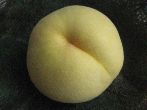 高橋農園さんの有袋の黄金桃:画像