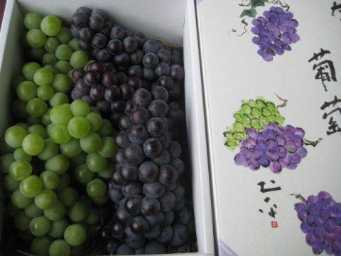 山形県産《ナイヤガラ&スチューベン》2kg化粧箱入:画像