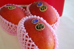 宮崎県産《太陽のタマゴ》国産マンゴの最高級ブランド:画像
