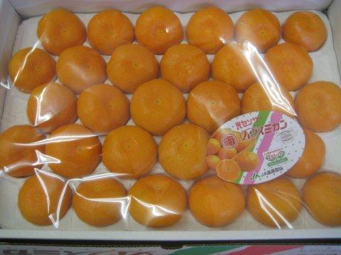 長崎県産《ハウスみかん》夏に美味しい冷たいみかん/30個入り:画像