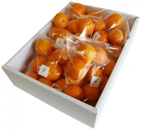 みかん食べ比べbox:画像