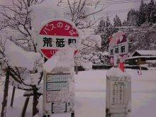 白鷹は 日本の紅(あか)を つくる町:画像