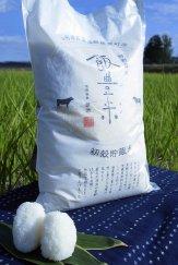 新米 27年産『飯豊米』 各品種:画像