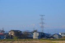 気ぜわしく 小春日和に 雪囲い:画像