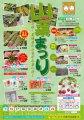 山菜まつり:画像