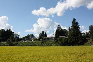 【フルーツ王国伊佐沢の風景】:画像