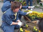 【高校生と商店街の花植え交流事業】:画像