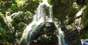 三階滝へ行こう第11回清流ウォーキング(H28.8.21) :画像