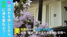 やませ蔵美術館 2018春開館中(H30.5.11~27(金..:画像