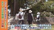 おさんぽ定期便[小出編](令和元年5月17日) :画像