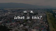 【長井市】 特集 『What is this?』 長井の四季総集 編:画像