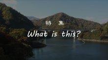 【長井市】 特集 『What is this?』 ながい百秋..:画像