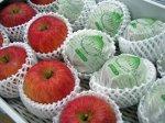 【りんごの出荷が始まりました♪】:画像