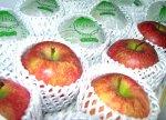 【りんごの故郷は〜♪北国山形のふじりんご初出荷です】:画像