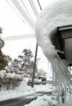 【あっという間に雪の中…】:画像