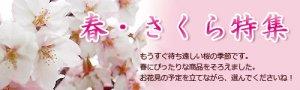 【桜商品入荷しました♪】:画像