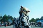 【第23回ながい黒獅子まつり〜九野本 八雲神社】:画像