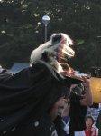 【第23回ながい黒獅子まつり〜草岡 津嶋神社】:画像