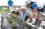 【お花がいっぱい〜フラワーボランティア教室2012】:画像