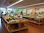 【おらんだ市場菜なポート リニューアルオープン!】:画像
