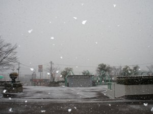 【外見てびっくり!モサ雪】:画像